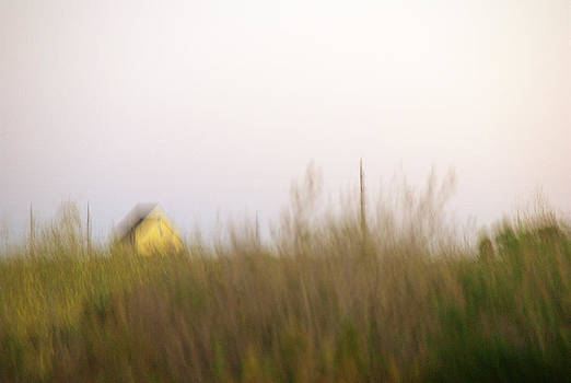 Little Yellow House by Judy Salcedo