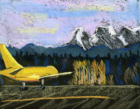Little Yellow Plane by Lelia Sorokina