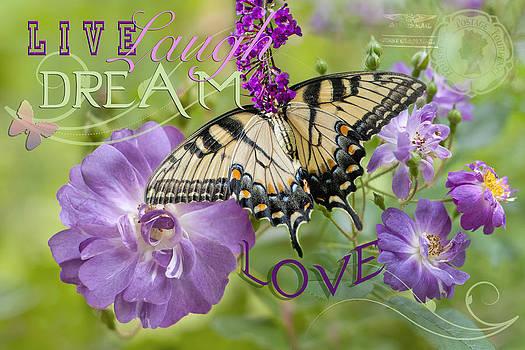 Live Laugh Dream Love by Bonnie Barry