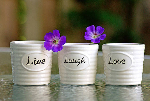 Live Laugh Love by Judy Salcedo