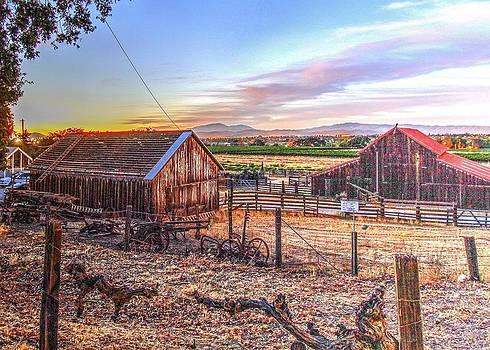 John King - Livermore Barns