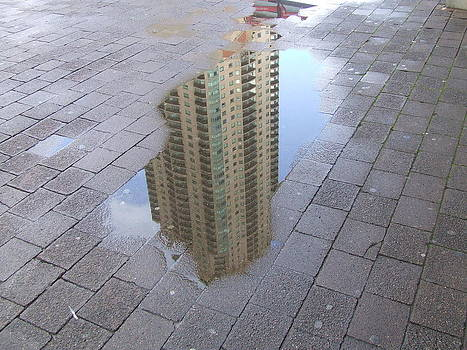 Living in a Puddle by Ron Baker