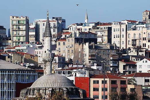 Ramunas Bruzas - Living in Istanbul