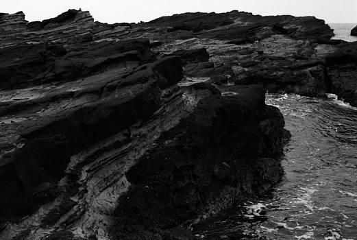 Lizard Point 5 by Jaakko Saari