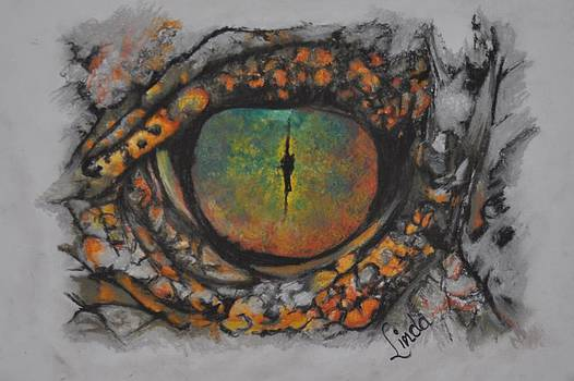 Lizards eye by Linda Ferreira