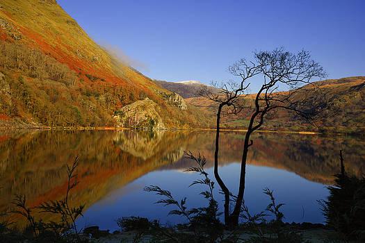 Llyn Gwynant is a lake in Snowdonia  Wales by Regie Marshall