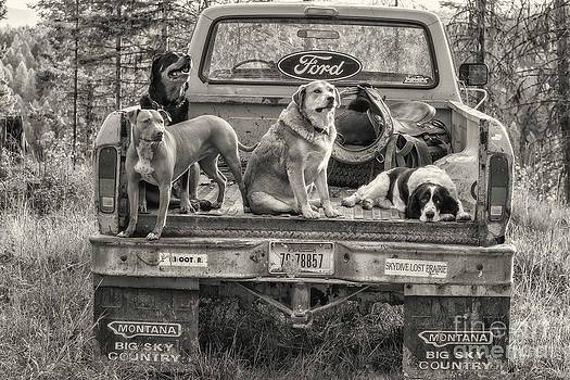 Loaded Up by Danny  Nestor