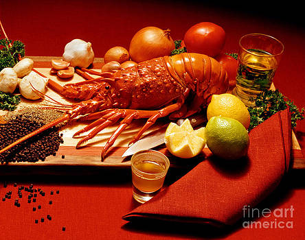 Craig Lovell - Lobster