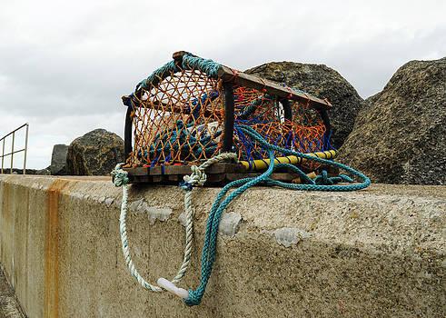 Eliza Donovan - Lobster Net