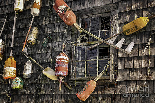 Thomas Schoeller - Lobster Shack Window Dressing