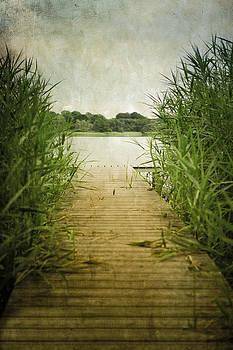 Lochside Walk by Peter Chadwick