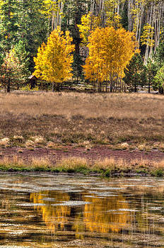 Tam Ryan - Lockett Meadow Reflection