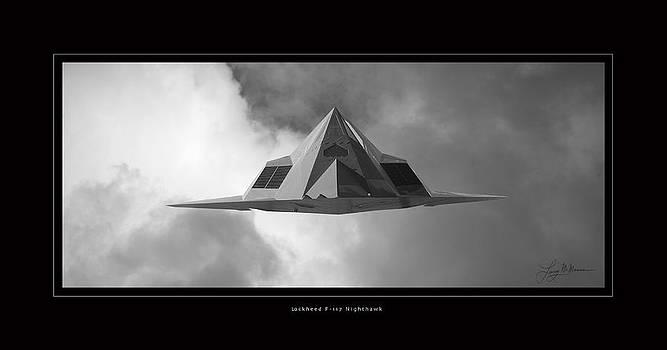 Lockheed F-117 Nighthawk by Larry McManus