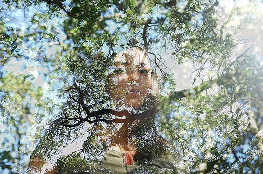 Donna Blackhall - Lofty Look