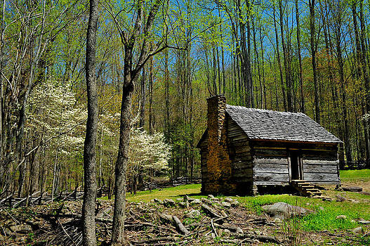 Log Cabin in the Smoky Mountain National Park by Don and Bonnie Fink