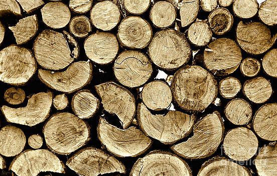 Logs by Jeff Breiman