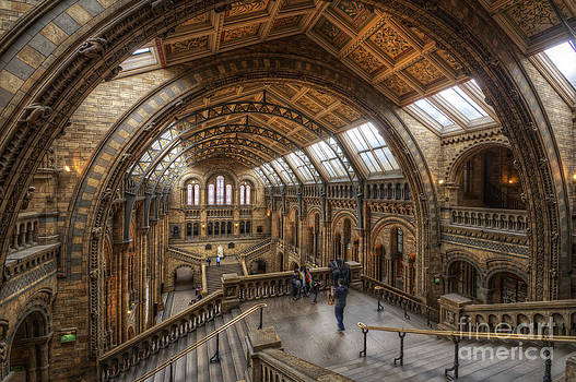Yhun Suarez - London Natural History Museum