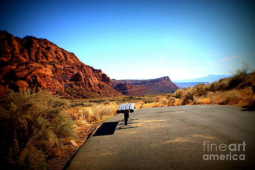 Lone Bench on the Trail by Polly Villatuya