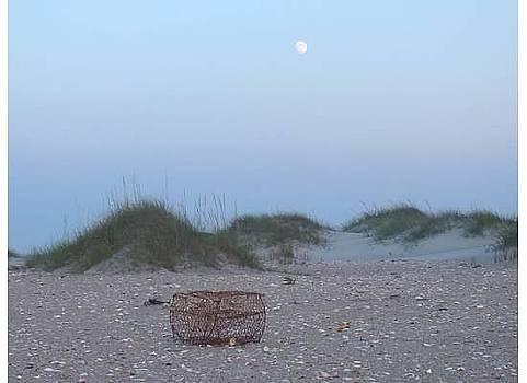 Lone Crab Pot by Tina Shamay