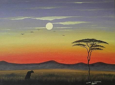 Lone hunter by Hilton Mwakima