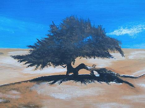 Lone Juniper  by Denise Hills