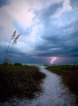 Lone Lightning Strike by Derek Latta