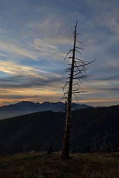 Randal Bruck - Lone Pine