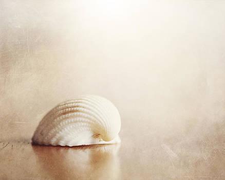 Carolyn Cochrane - Lone Shell