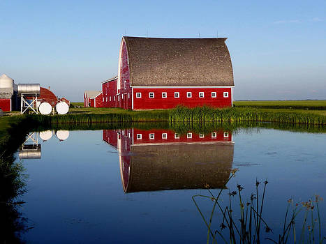 Lone Star Farms by Larry Trupp