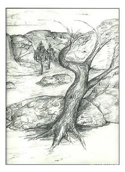 Joseph Wetzel - Lone Tree