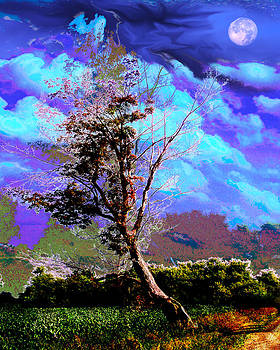 Lone Tree by Robert St Clair
