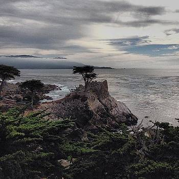 #lonecypress #pebblebeach by Ben Tesler