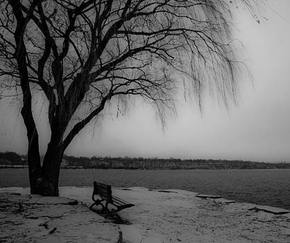Lonely Bench by Craig Brown