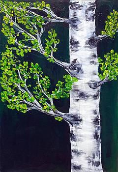 Lonely Birch  by Catherine Jeffrey