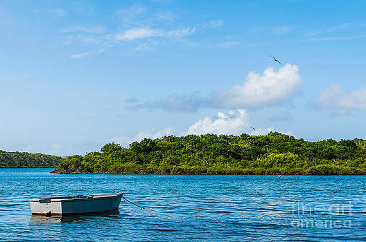 Lonely Boat by Luis Alvarenga