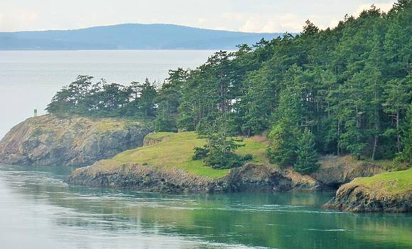 Lonely Island off Deception Pass by Ann Michelle Swadener