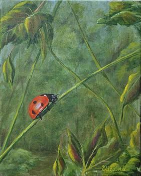 Lonely Ladybug by Beth Maddox