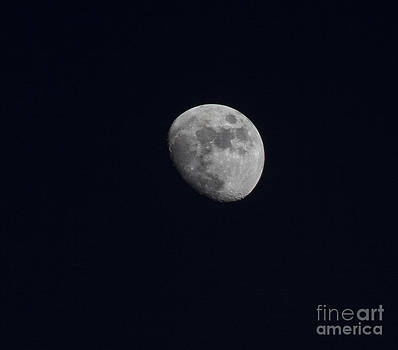 Lonely Moon by Margaret Guest