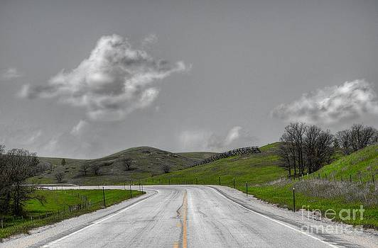Lonely Road by Anthony Wilkening