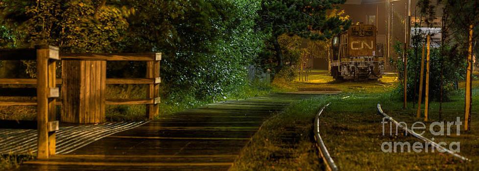 lonely Train by Adam Dove