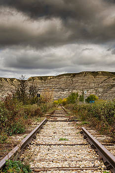 Lonely Train Tracks  by Maik Tondeur