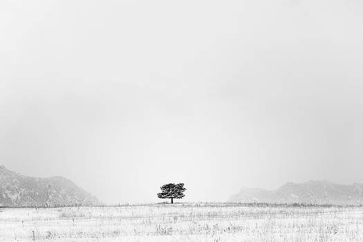 Lonesome by D Scott Clark