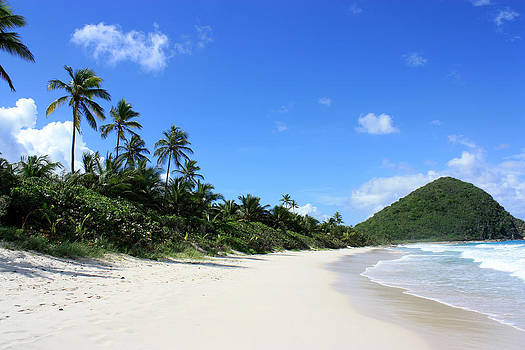 Long Bay Tortola by Laura Hiesinger