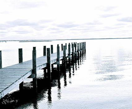 Long Dock by Adrianne Wilkinson