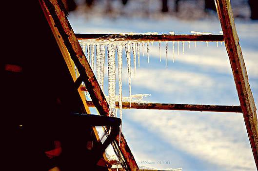 Long Drops of Ice by Sheila Noren