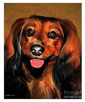 Long-haired Dachsund by Margie Middleton