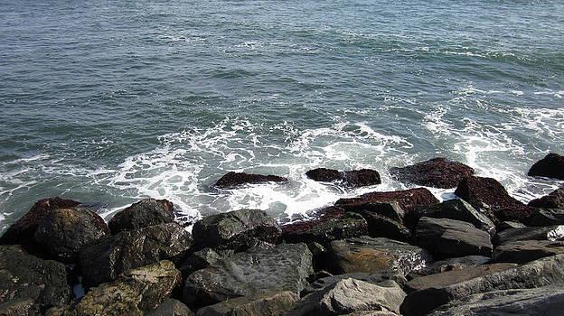 Long Island Shore by Joanna Baker - Jenkins