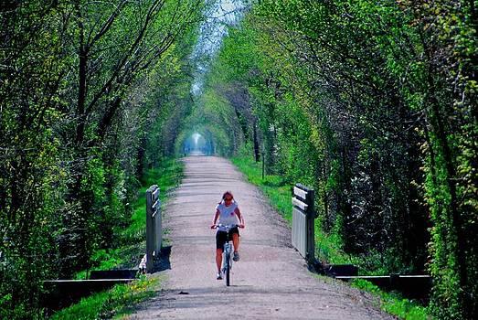 Long Ride by Larry Bodinson