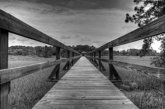 Long Walk by David Paul Murray