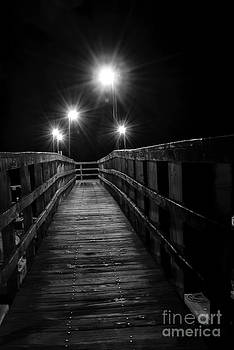 Long Walk on a Short Pier by Terry Garvin